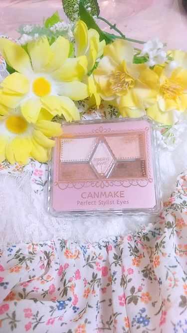 CANMAKE パーフェクトスタイリストアイズ(旧)