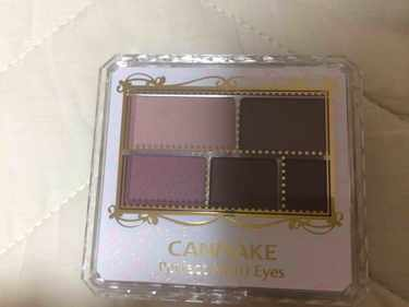CANMAKE パーフェクトマルチアイズ